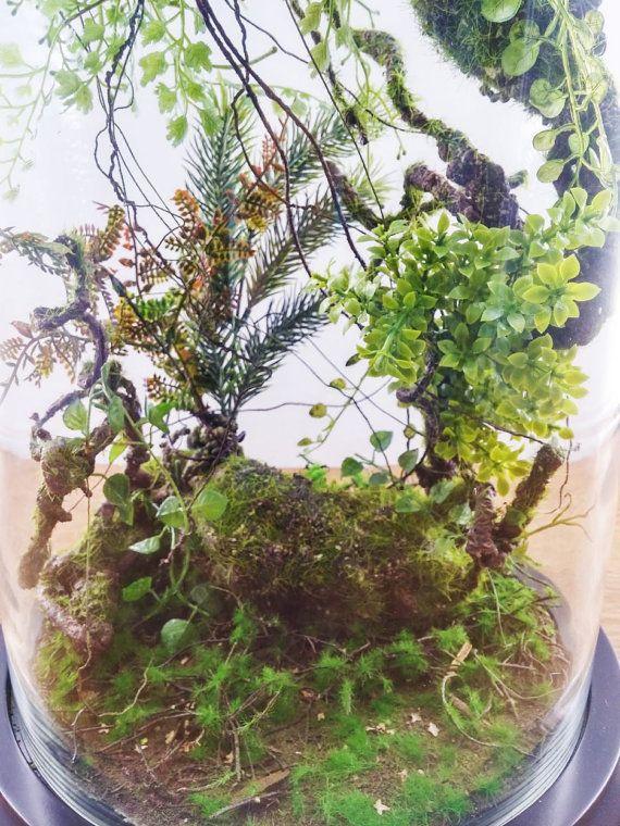 Forest terrarium of artificial plants Cabinet of curiosity