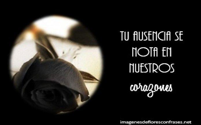 imágenes de rosas negras de luto con frases