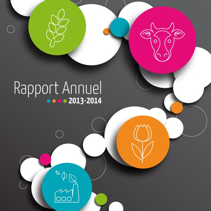 Image result for Rapport annuel