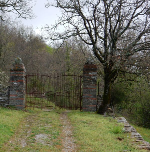 Gate in Chianti near Badia a Coltibuono