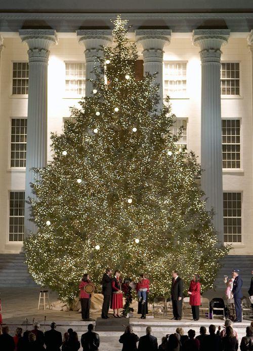 Alabama State #Christmas Tree