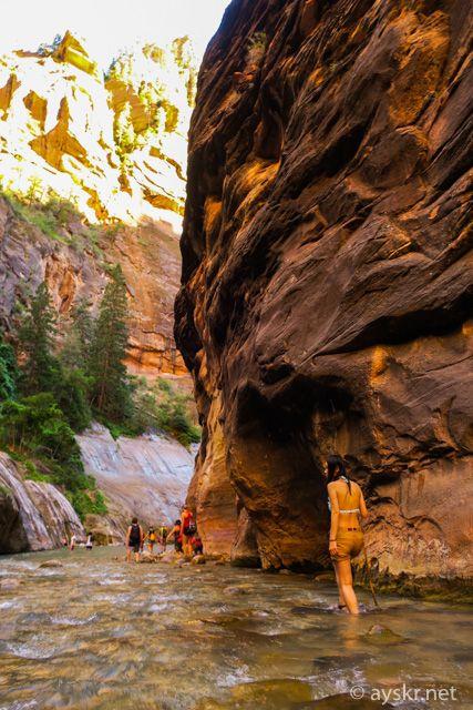 激走グランドサークル Day1 ザイオン国立公園  名物・川のぼりトレイル・ナローズ – ayskr.net
