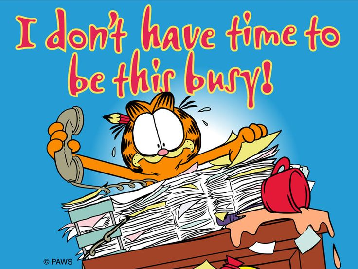 I don't have time to be this busy!  #garfield