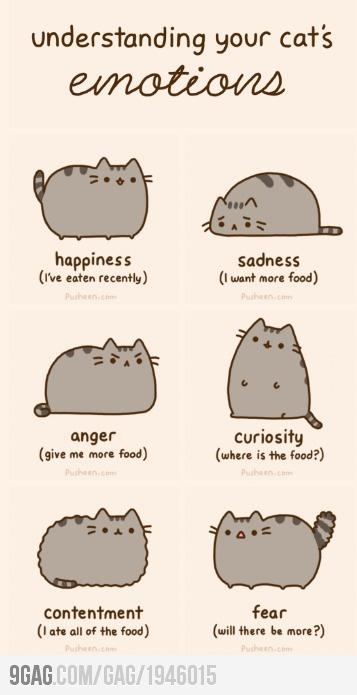 pusheemotions....basically I am a cat lmfao