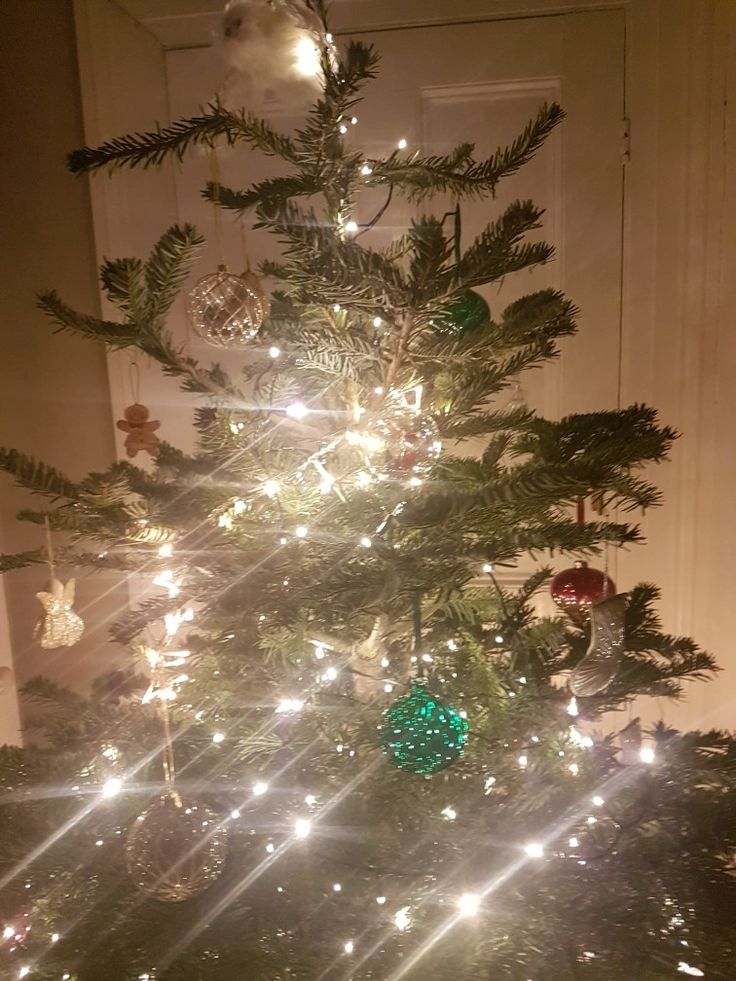 Christmas tree ready 33 best our victorian