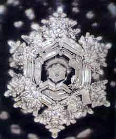 Love and Gratitude Water Crystal. Picture by Dr. Masaru Emoto  Dr. Emoto has found through his research the power of words...positive words imprinted on containers of water then frozen make these gorgeous ice crystals. Conversely, ugly, negative words imprinted on containers of water when frozen create dark, muddled and irregular crystals. WORDS HAVE POWER! Speak lovingly and create the magic!