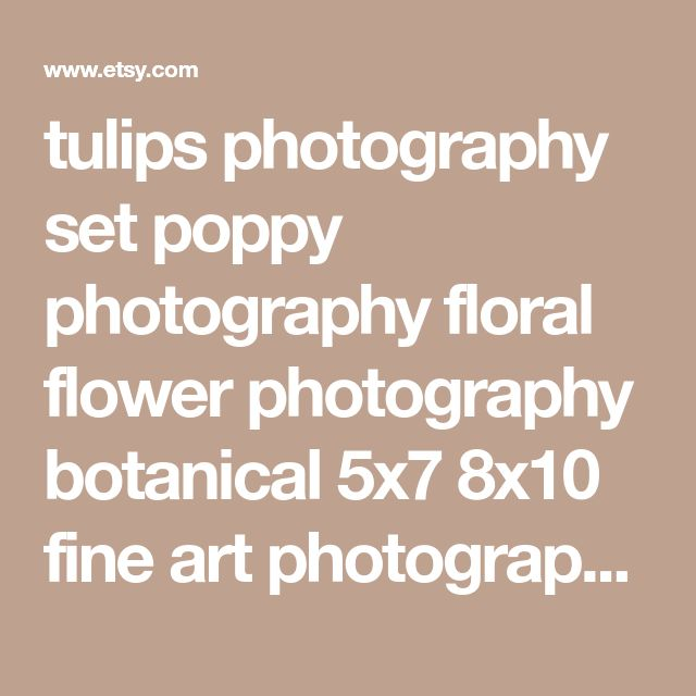 tulips photography set poppy photography floral flower photography botanical 5x7 8x10 fine art photography nature teal mint red pink spring
