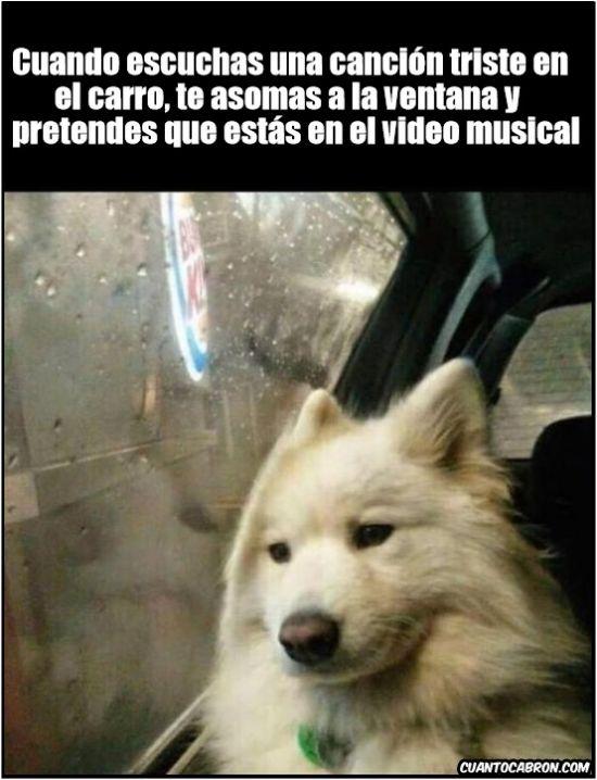 Como te sientes al oír una triste canción        Gracias a http://www.cuantocabron.com/   Si quieres leer la noticia completa visita: http://www.estoy-aburrido.com/como-te-sientes-al-oir-una-triste-cancion/
