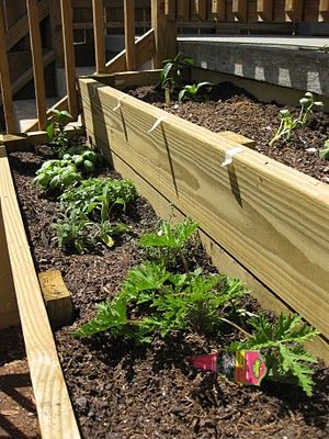 17 Best images about Gardening tiered on Pinterest ... on Tiered Backyard Ideas id=57612