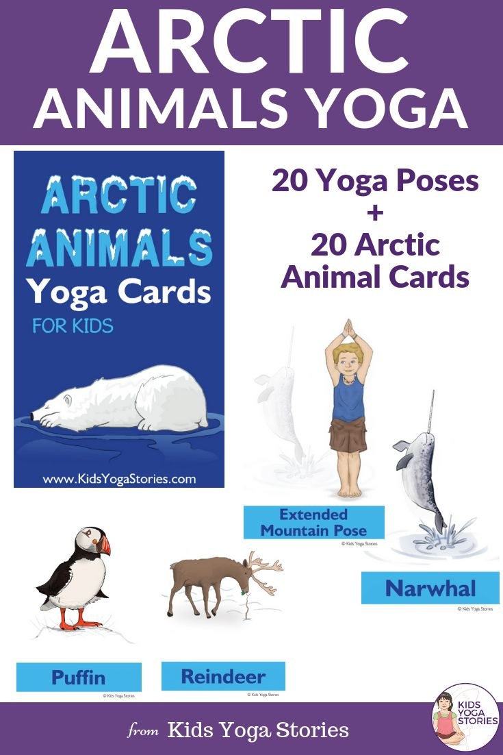 Arctic Animals Yoga Cards For Kids Yoga For Kids Animal