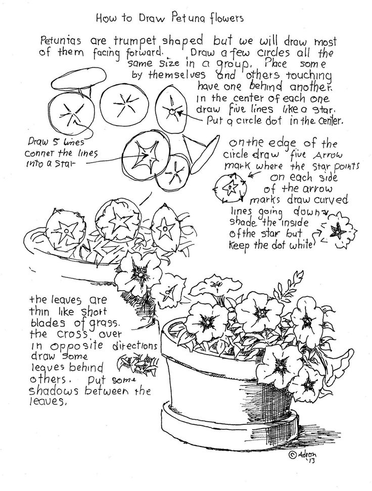 Line Drawing Techniques Worksheet : Best ideas about flower drawing tutorials on pinterest
