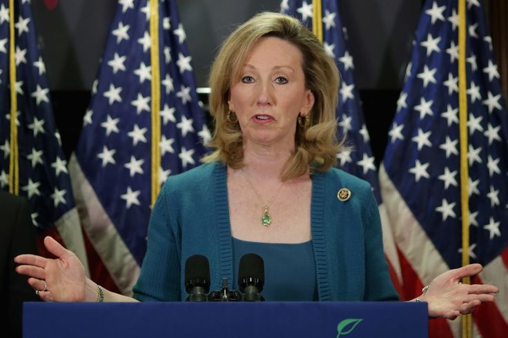 Republicans on the run: VA residents furious after GOP Congresswoman no-shows at town hall event...They continue to dodge town halls, lock office doors, call Security, let phones go unanswered and delete comments from their pages...Just what is so scary about their constituents?