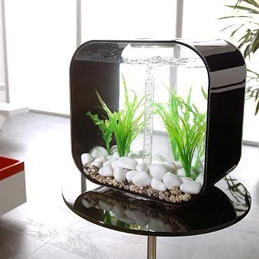BiOrb Life 8-gallon Aquarium