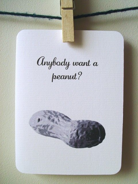 stop that rhyming, i mean it!! http://www.etsy.com/listing/71039135/anybody-want-a-peanut