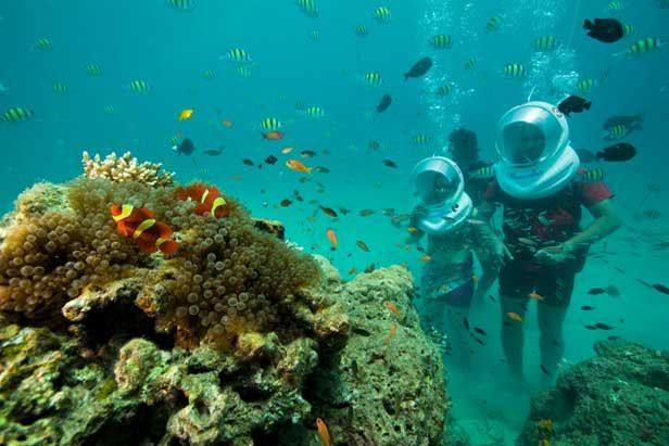 "#seawalking #seawalk Popularly referred to as ""Natures Paradise"",Andaman & Nicobar Islands abound in rich natural underwater treasures. The waters are home to an endless variety of exotic aquatic life. Nobody can escape from pristine beauty and superb natural wonders of these islands. These islands gleam like diamonds and are magnificent jewels in the crown of Island holiday destinations. That's why it is one of the dream destination in every one's list."