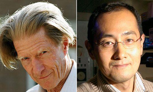 """""""Le cellule possono tornare indietro nel tempo"""" conquista il Nobel per la medicina 2012"""