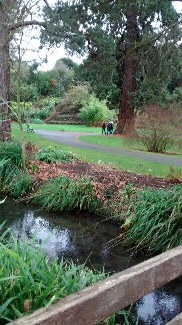 Jardim Botânico Dublin/ IE 01/2017