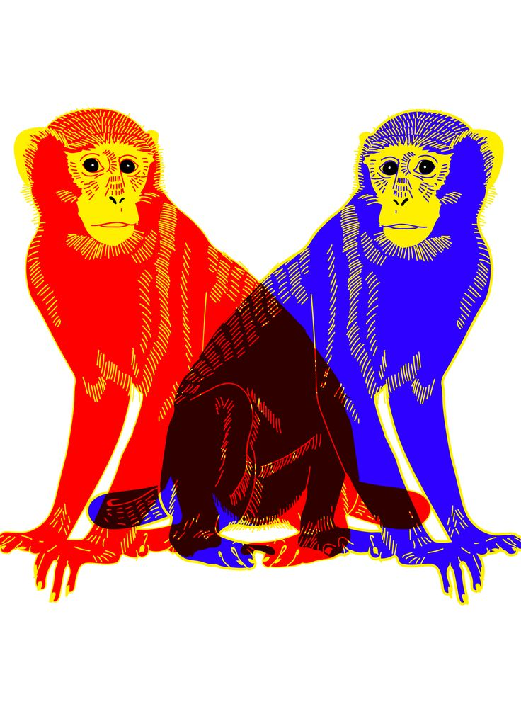 What Every Sign Needs To Know About The Year Of The Monkey+#refinery29