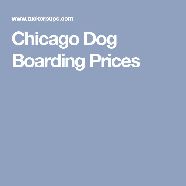 Chicago Dog Boarding Prices