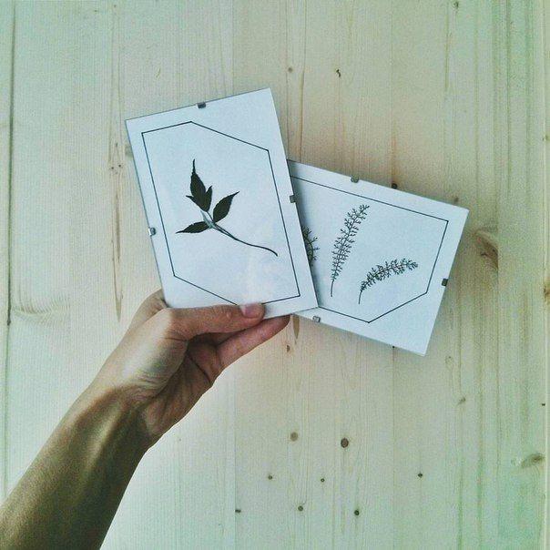 tiny #herbarium #decor #pressedflowers #driedflowers #гербарий