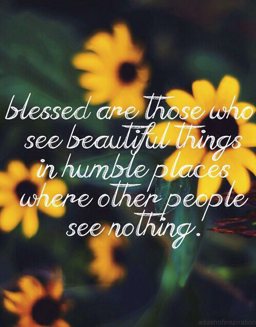 Best flower quotes images on pinterest