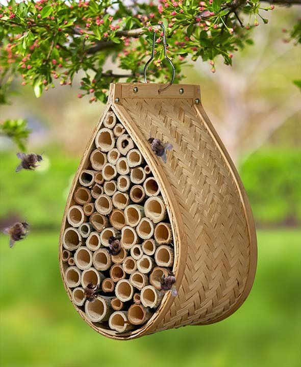 Help Pollinate Your Garden With A Mason Bee House Bees Take Their Name From