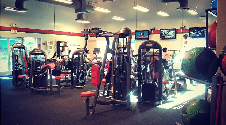 Check out some Imported Gym Equipment for Gym Setup