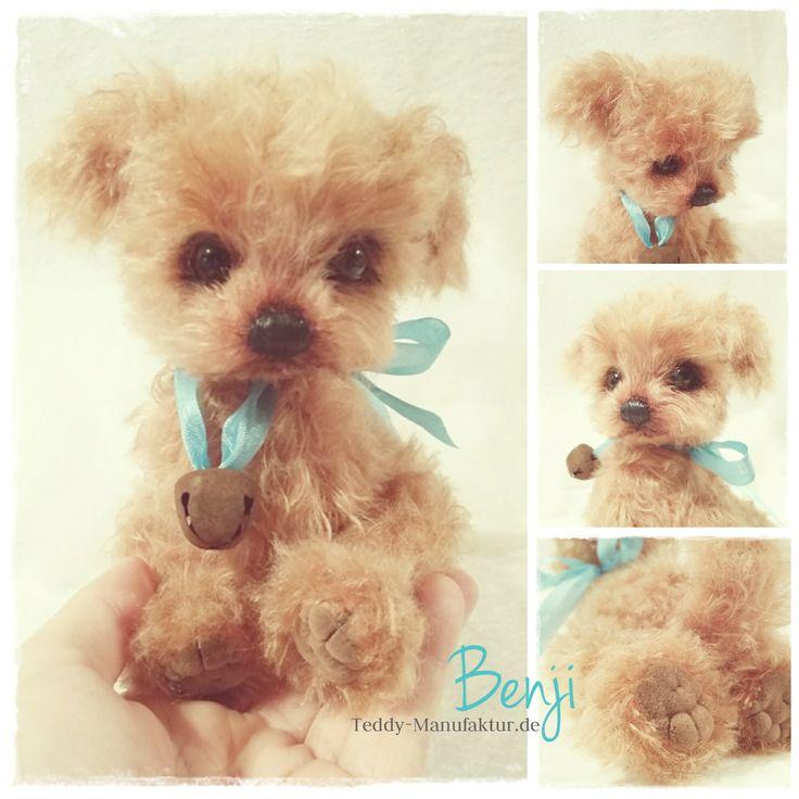 ♡ CockerPoo Puppy BENJi ♡ AVAILABLE for adoption www.Teddy-Manufaktur.de