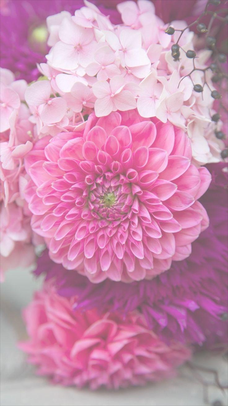 best 25 flower phone wallpaper ideas on pinterest pretty