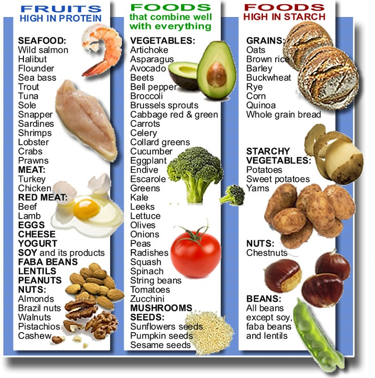 your types of food health and excercise