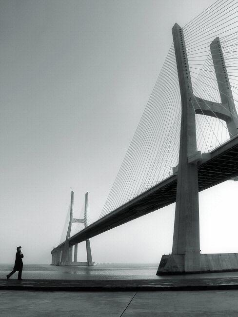 55 best Cable Stayed Bridge images on Pinterest   Bridges ...