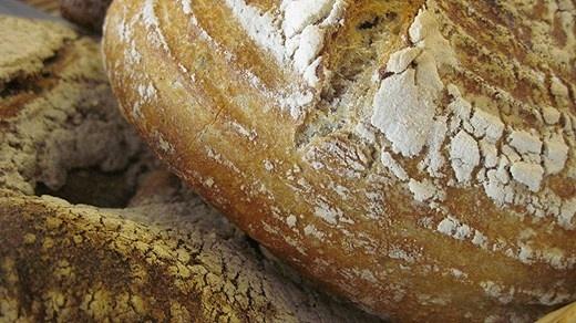 Surdegsbröd - hur gör man egentligen? Här hittar du ett härligt grundrecept på bröd och dessutom - ett par krämiga ostmassor att ha till! Klicka på bilden för att kolla in receptet!