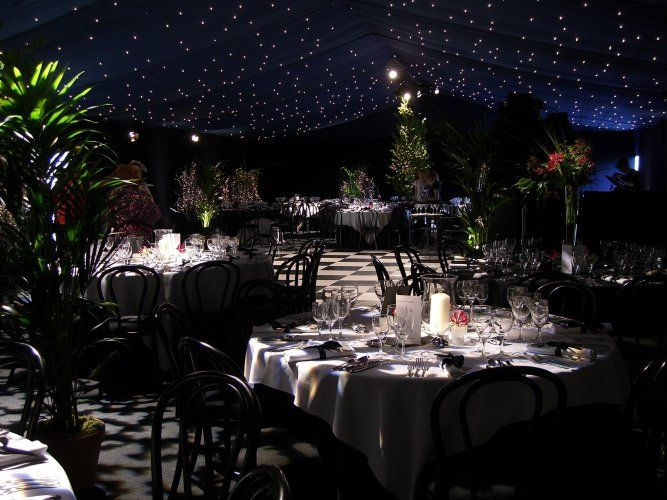 star lighting for an outdoor reception ! Love it <3