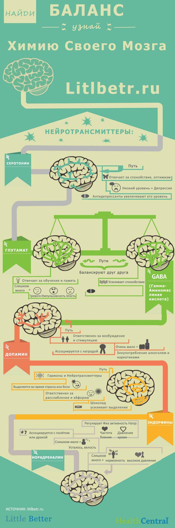 BrainChemistry2