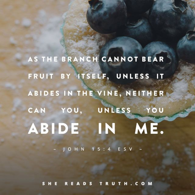 The Fruit of Abiding.  John 15:4♥Father, thank you for your Word. Graft us to the True Vine today and every day, and teach us what it means to abide when all we want to do is produce. Help us to rest in your never-stopping love. Amen.