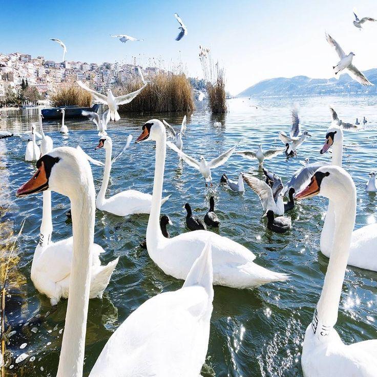 Kastoria, Macedonia Greece