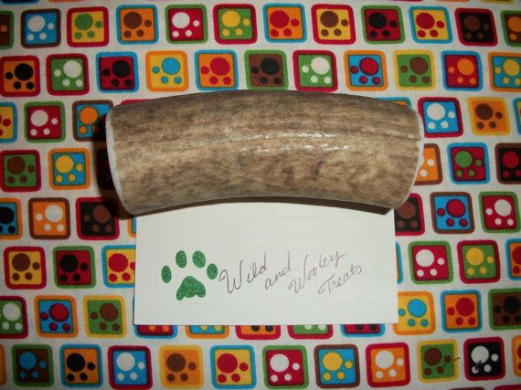Large Elk Antler Dog Chew Lot 552 by WildandWooleyTreats on Etsy, $13.99