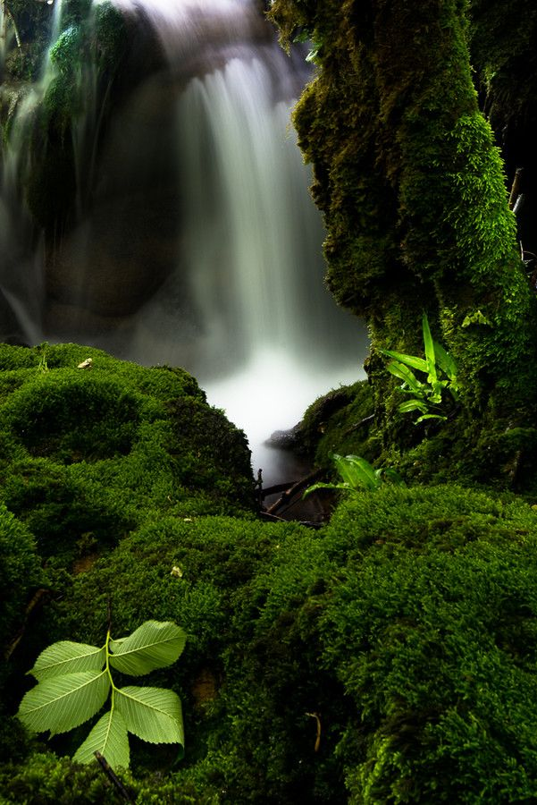 Cascade Des Tufs - Jura Mountains, France