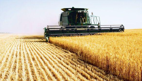 Victor Ponta a declarat, astazi, ca agricultura a avut o contributie la cresterea economica de 3,5% in anul 2013. Premierul a precizat ca nu toata cresterea este datorata acestui sector. Aceasta cres