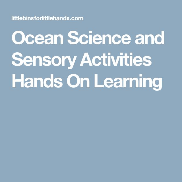 Ocean Science and Sensory Activities Hands On Learning