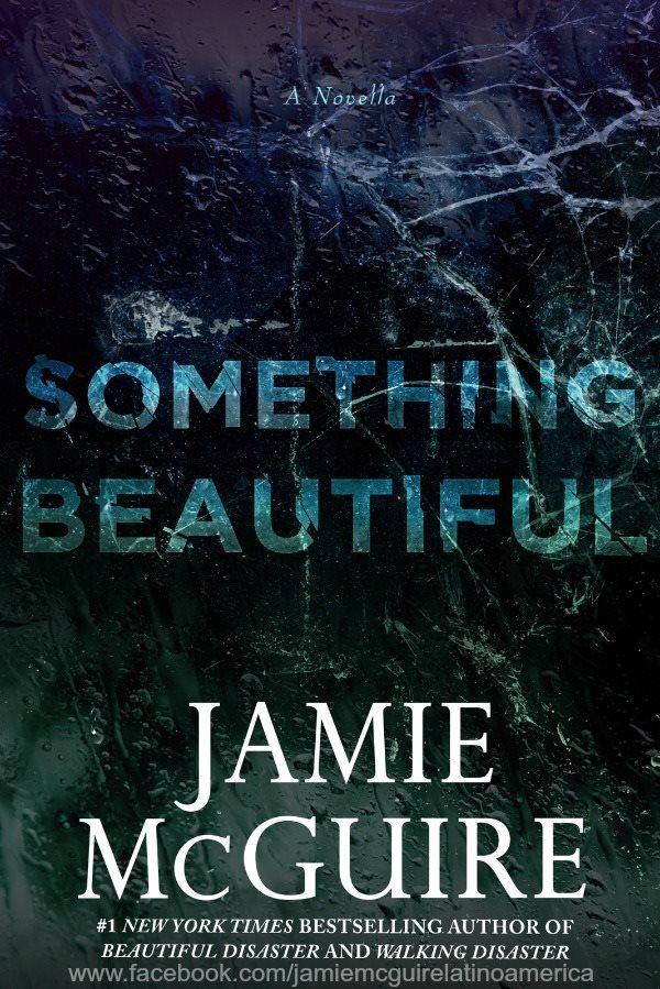 Jamie McGuire, Something Beautiful