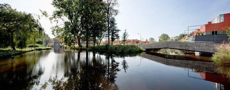 Scholenaer Haarlem - AHH
