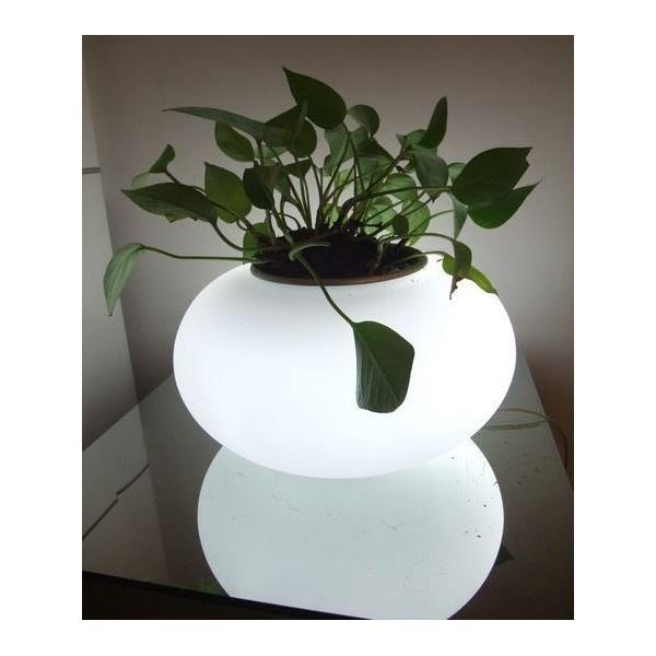 107 best Herb Garden Pots images on Pinterest Plants