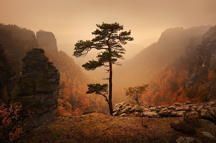 Czech-Saxon Switzerland II on Behance