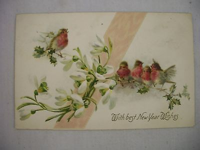 VINTAGE EMBOSSED NEW YEAR POSTCARD BIRDS ON BLOOMING HOLLY SPRIGS W/ GREETING