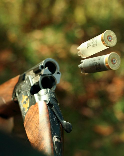 Clay shooting. (With a very expensive gun - update:Beretta Silver Pigeon IV)