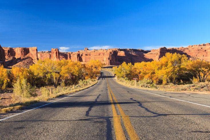 10x Local Food Road Trips in Amerika