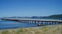 petone beach - Google Search