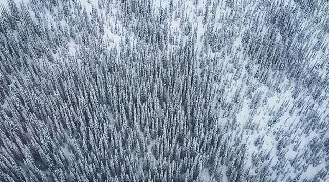 The Kootenays look good from above.  #baldface #snowboarding #ride #choppershot #snowboard #backcountry #catskiing #nelson #britishcolumbia #supernatural #bc #canada