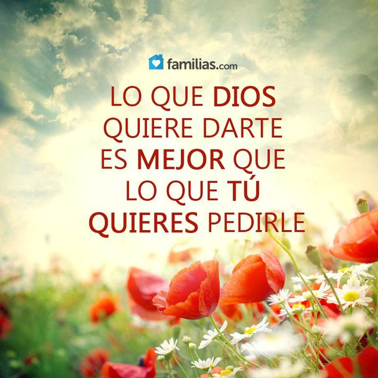#frase #frasesdelavida #frasesinstagram #amore #reflexiones #letrasbonitas #poemasdeamor #citas #followme